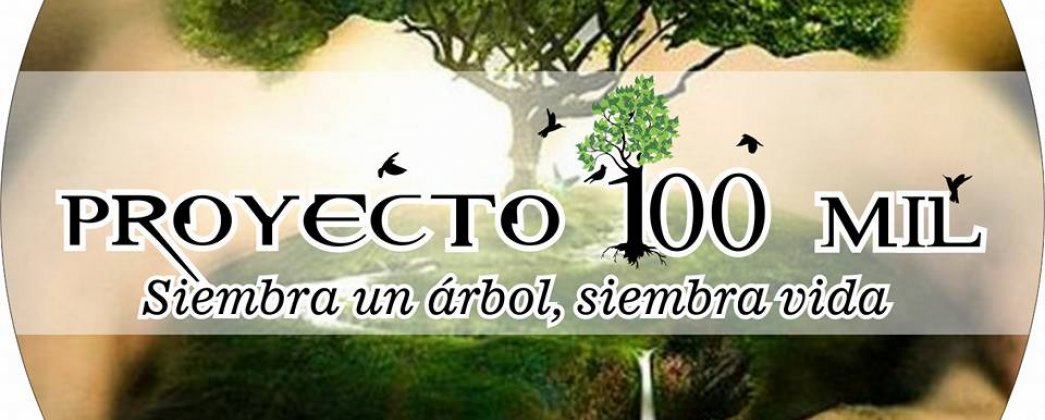 Proyecto 100 MIL